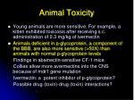 animal toxicity1