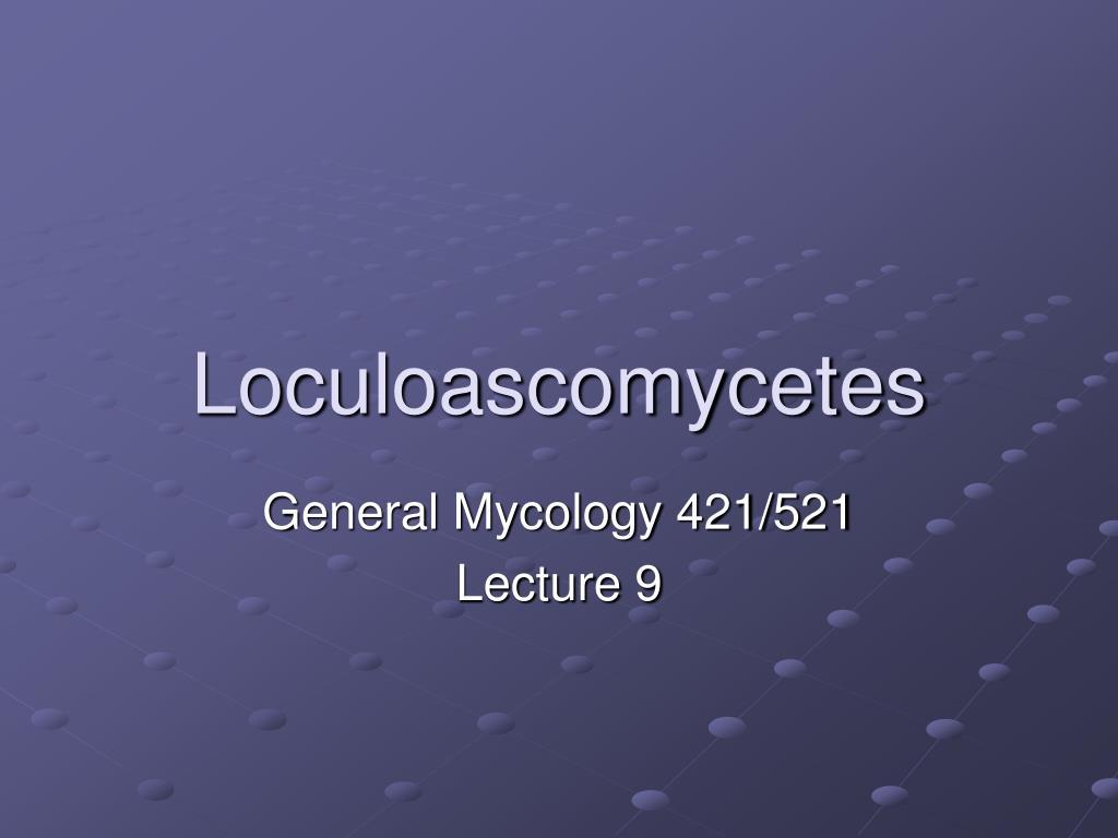 loculoascomycetes l.
