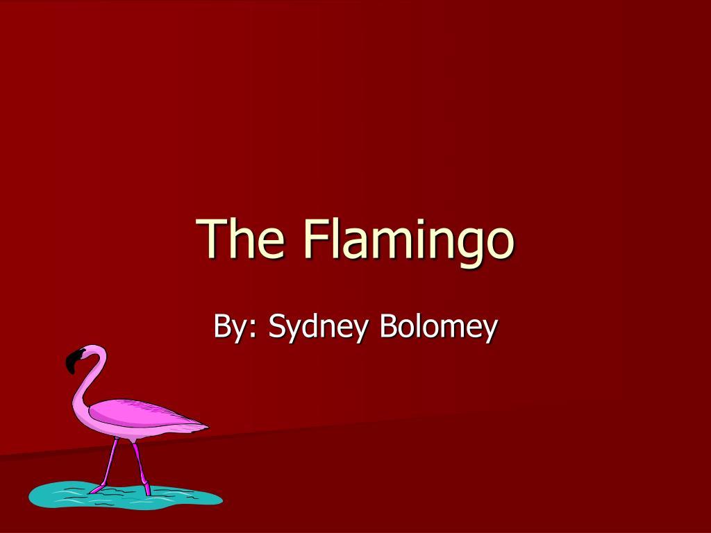 the flamingo l.