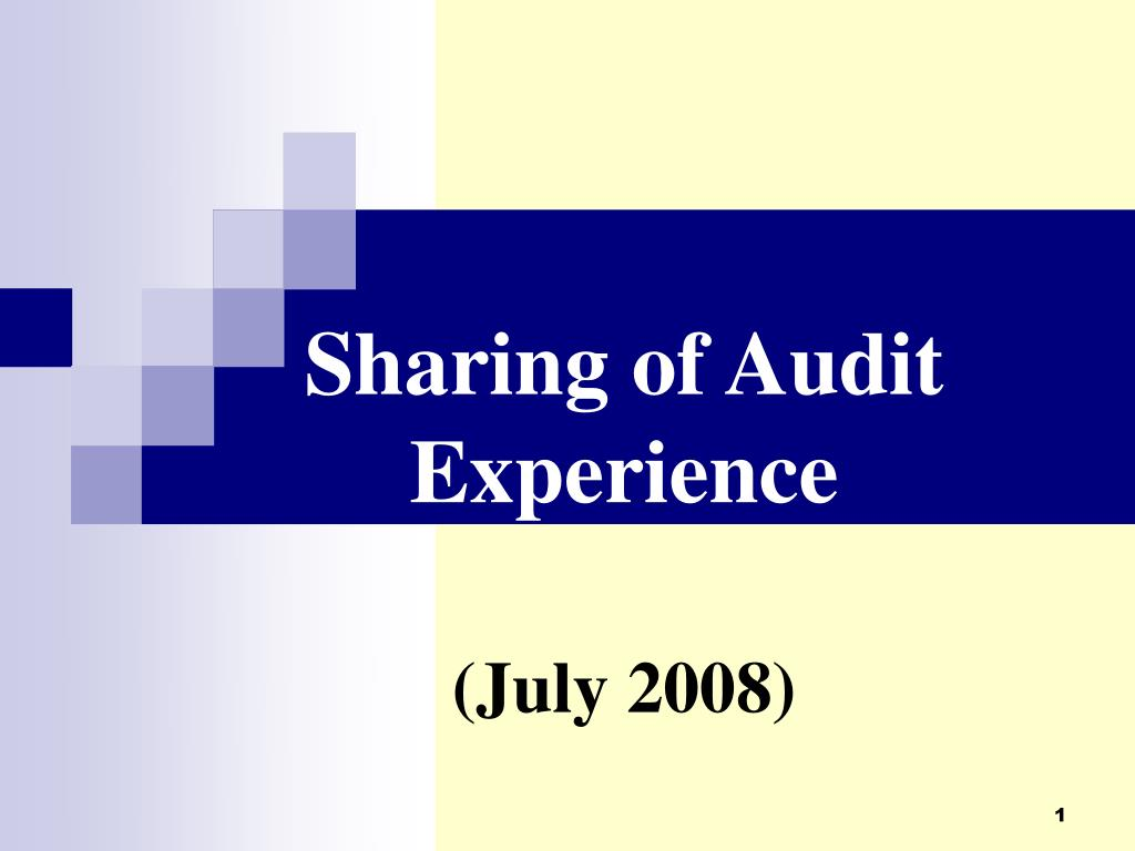sharing of audit experience july 2008 l.
