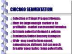 chicago segmentation21
