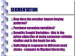 segmentation16