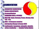 segmentation19