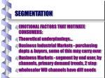segmentation39