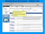 metadata record environment artifacts view