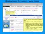 metadata record environment value column