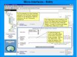 micro interfaces entity