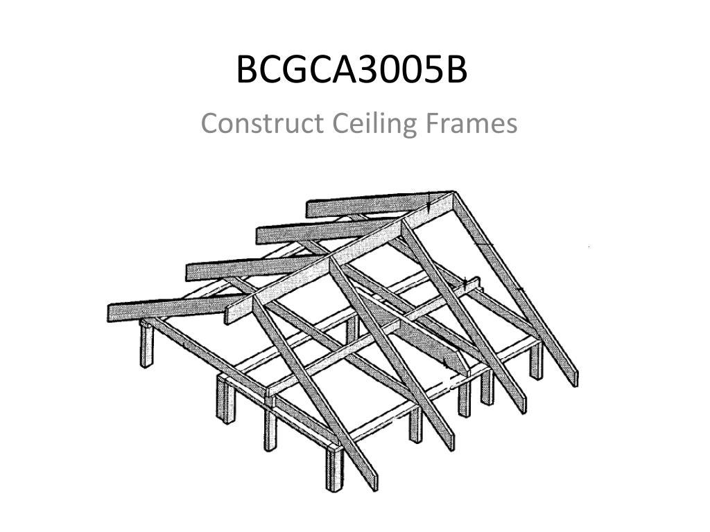 bcgca3005b l.