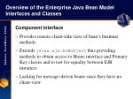 overview of the enterprise java bean model interfaces and classes8