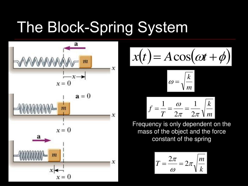 The Block-Spring System