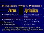 biosynthesis purine vs pyrimidine
