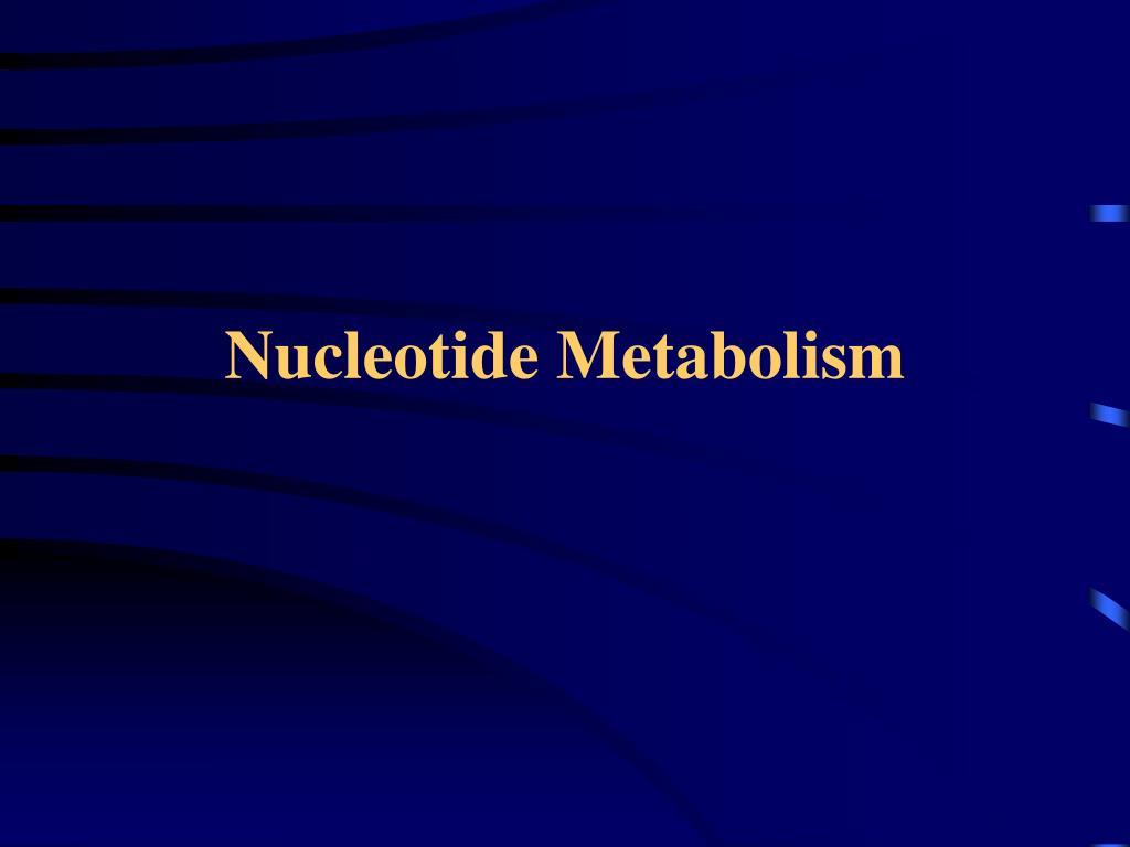 nucleotide metabolism l.