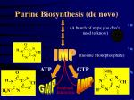 purine biosynthesis de novo10