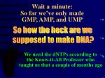wait a minute so far we ve only made gmp amp and ump