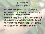 coevolution ants and plants