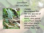 coevolution ants and plants23