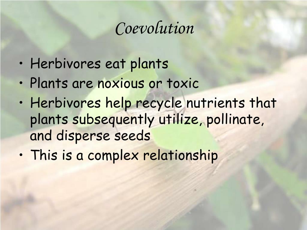 coevolution l.