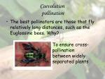 coevolution pollination13