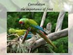 coevolution the importance of fruit28