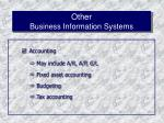 other business information systems