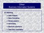 other business information systems47