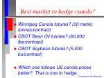 best market to hedge canola