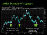 amzn example of supports
