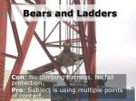 bears and ladders