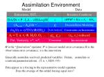 assimilation environment