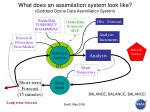 what does an assimilation system look like goddard ozone data assimilation system
