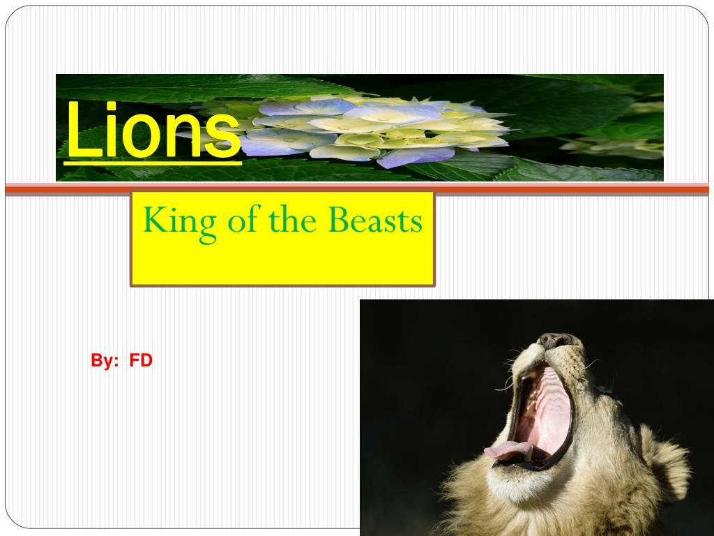 lions l.