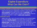 eligible expenditure what can we claim