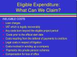 eligible expenditure what can we claim30