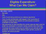eligible expenditure what can we claim31