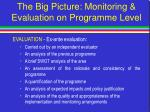the big picture monitoring evaluation on programme level49