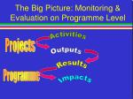 the big picture monitoring evaluation on programme level52