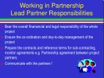 working in partnership lead partner responsibilities