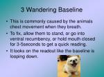 3 wandering baseline