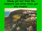sheep get lost from the shepherd and often times get into trouble