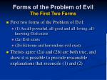 forms of the problem of evil the first two forms