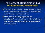 the existential problem of evil the experience of pointless evil