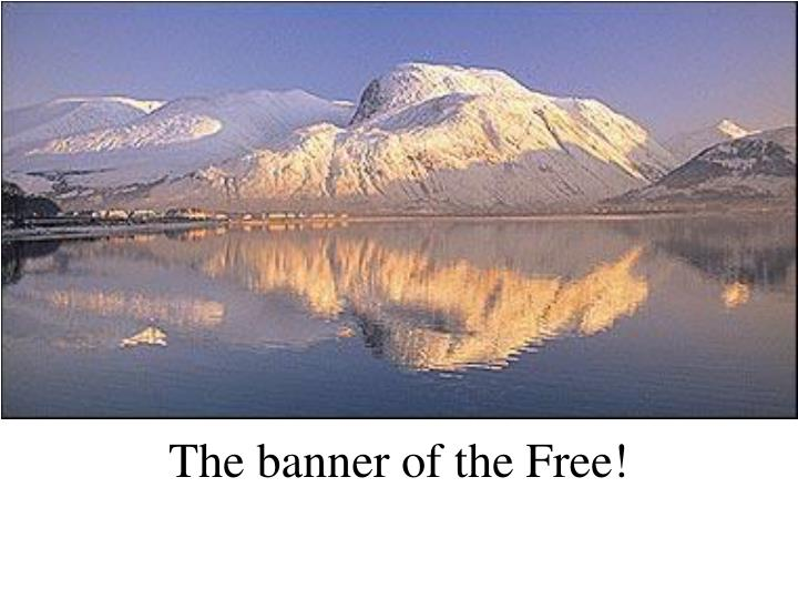The banner of the Free!