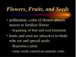 flowers fruits and seeds