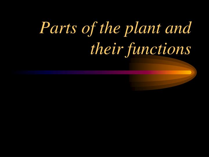 parts of the plant and their functions n.