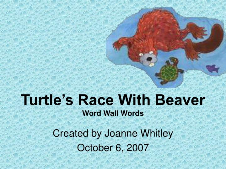 turtle s race with beaver word wall words n.