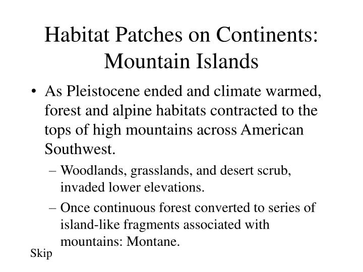 Habitat Patches on Continents: Mountain Islands