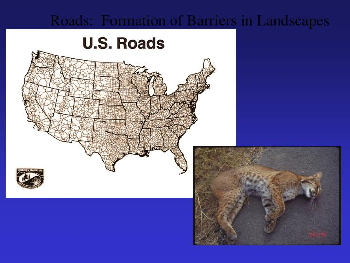 Roads:  Formation of Barriers in Landscapes
