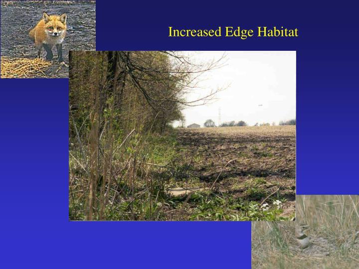 Increased Edge Habitat