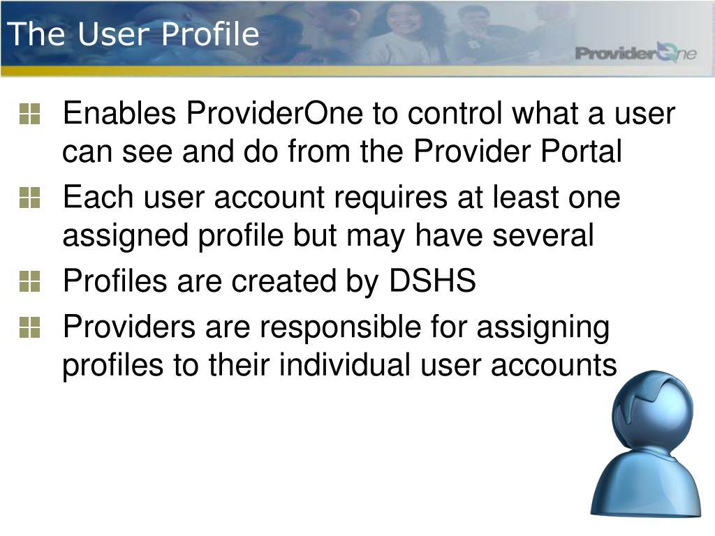 The User Profile