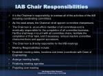 iab chair responsibilities